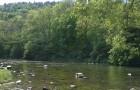 Řeka Jihlava