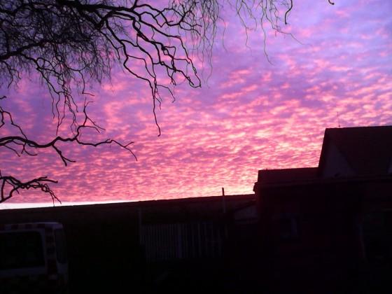 Obloha, foceno na našem dvoře