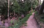 Zahrada mrtvých-Třebíč
